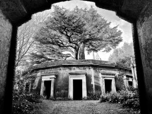 Circle of Lebanon, Highgate