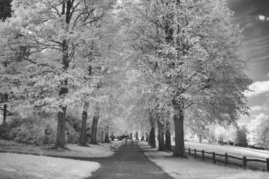 Summer becomes winter