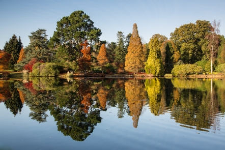 Late autumn view of Sheffield Park lake