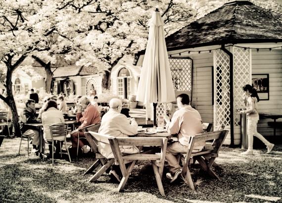Nymans tea garden
