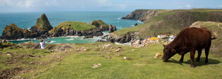 Panorama near Lands End, Cornwall