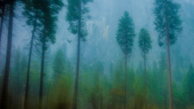 View from bus window, Yosemite in the rain